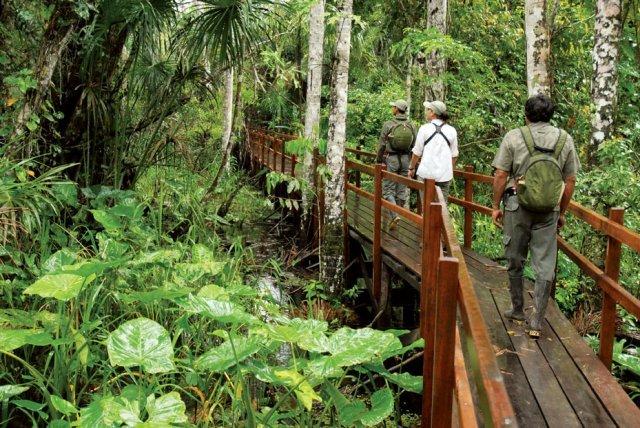 Ecotourism Excursions
