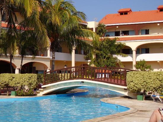 Cuatro Palmas Pool
