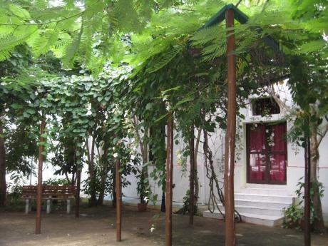 San Alejandro Garden